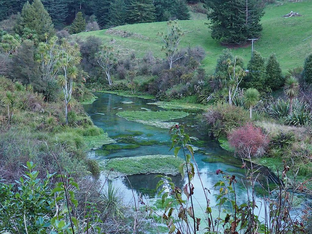 La rivière Blue Spring en Nouvelle-Zélande