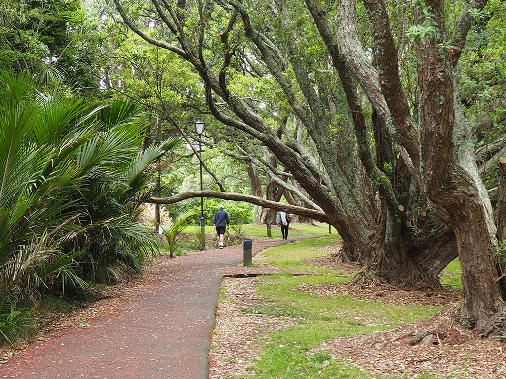 Auckland en deux jours: Auckland Domain, parc central du CBD