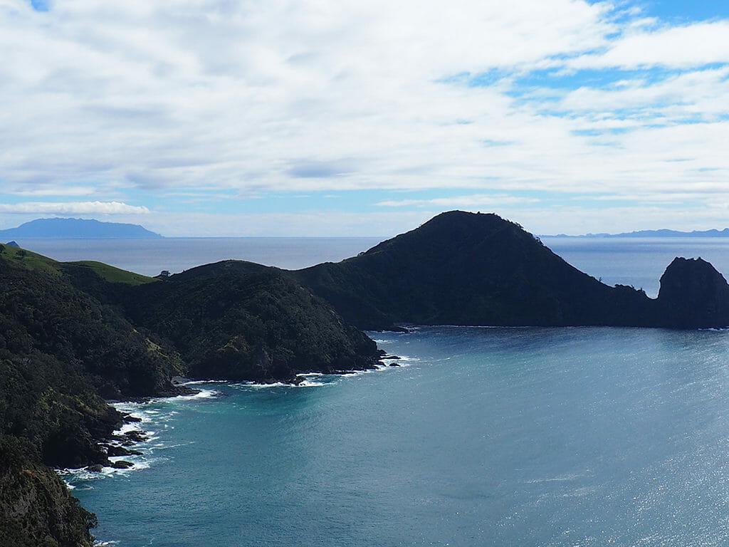 Randonnée sur la Coastal Walkway, Coromandel, Nouvelle-Zélande