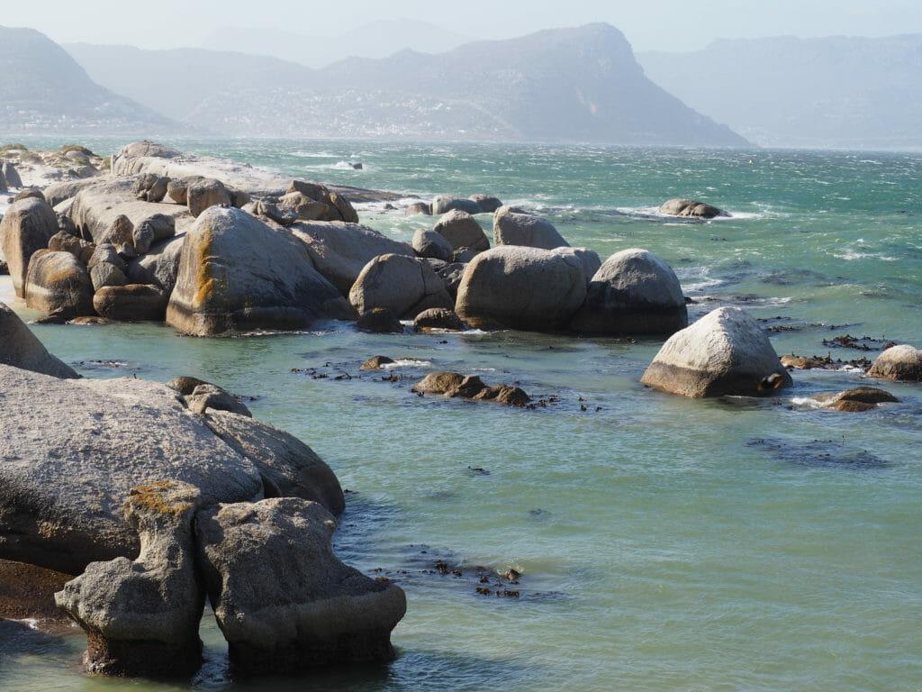 Itinéraire Afrique du Sud: Boulder's beach