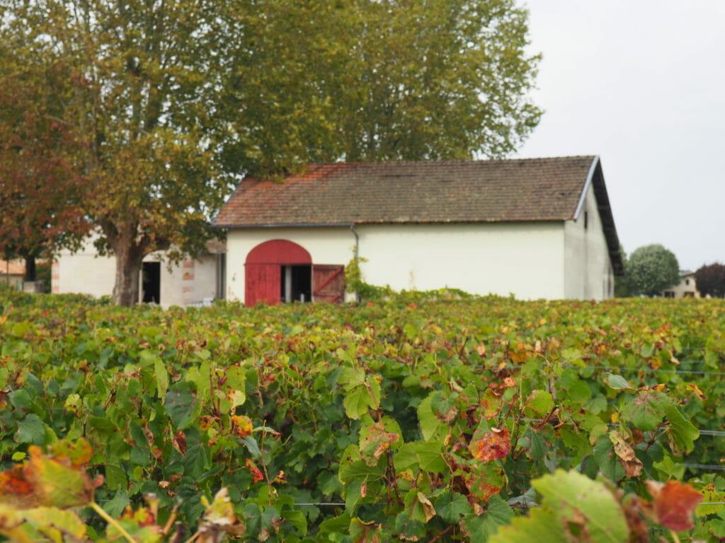 Saint Emilion, Bordeaux, Vignobles, Ballerinasandsneakers